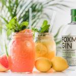 Foxman-Gin-69,9-Orange-Zitrone-